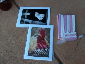 Notecards and twixit clips for herbal sprays