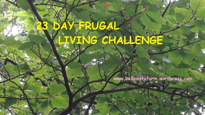 frugal living button