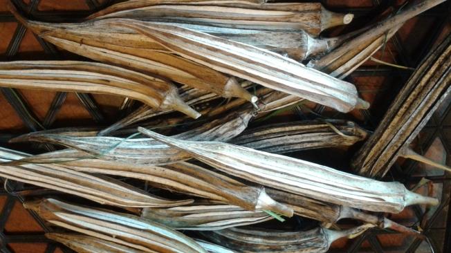 dried okra pods