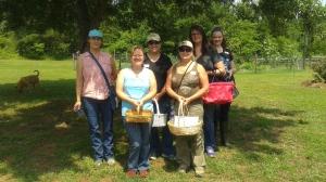 Backyard Medicinal Workshop June