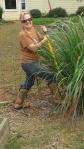 How To UseLemongrass