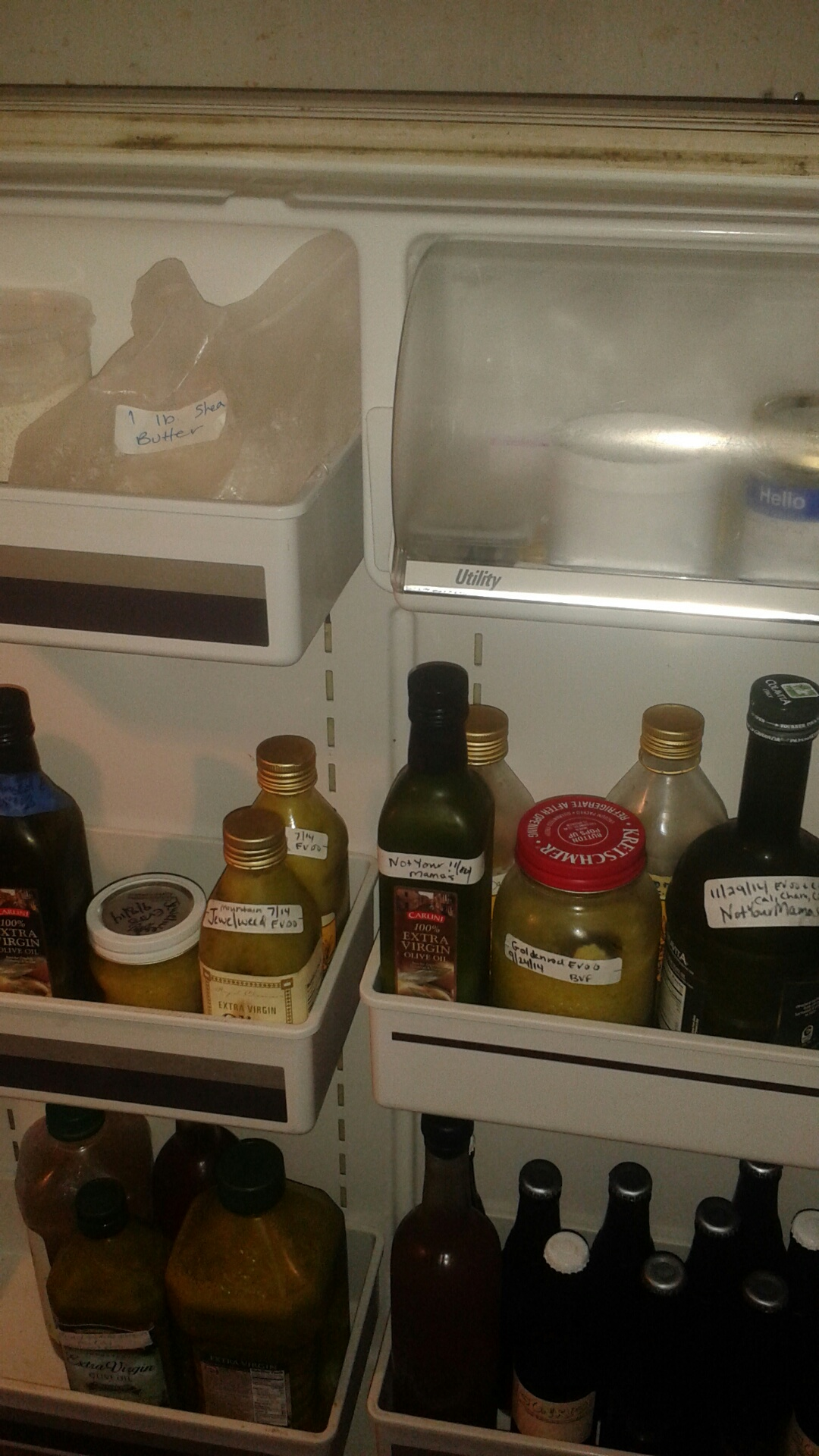 outside fridge door - salve oils