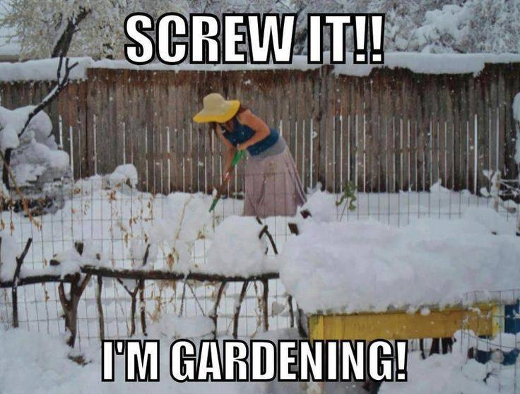 screw it gardening